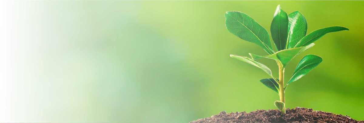 slider3-licença-ambiental